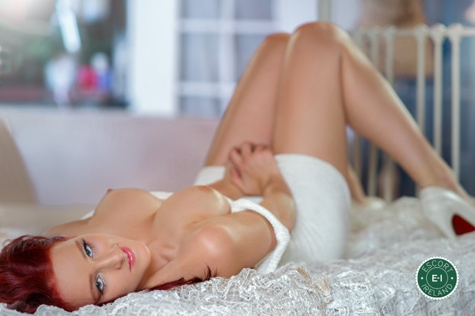 Meet the beautiful Cute Ariel in Dublin 4  with just one phone call
