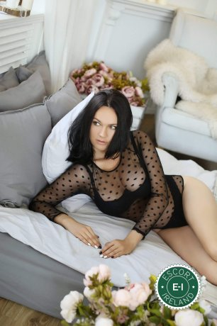 The massage providers in Dublin 1 are superb, and Stefany Massage is near the top of that list. Be a devil and meet them today.