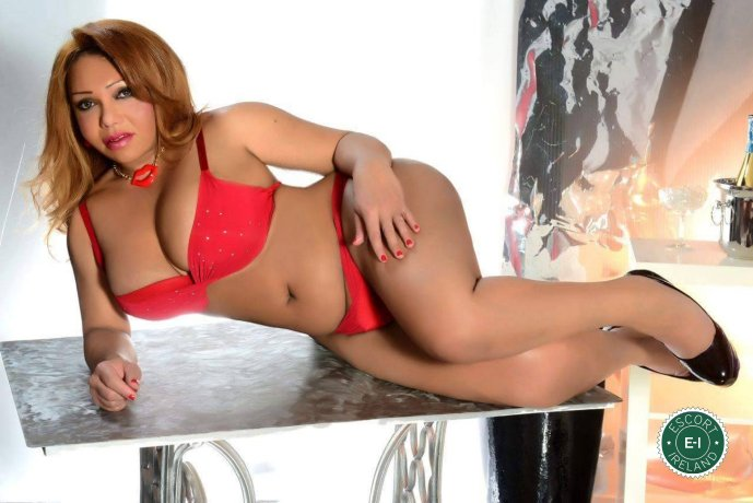 Adriana Gomes TS is a sexy Brazilian escort in Waterford City, Waterford