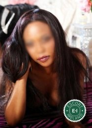 Nina is a super sexy Cape Verdean Escort in Letterkenny