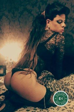 Rita VonTeese TV is a top quality Brazilian Escort in