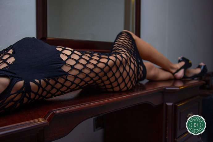 Meet the beautiful Sweet Katy in Dublin 24  with just one phone call