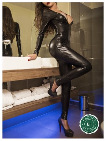Meet the beautiful TS Renatha Lopez in Dublin 2  with just one phone call