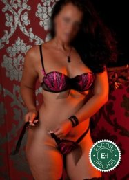The massage providers in Dublin 18 are superb, and Monica Madrid is near the top of that list. Be a devil and meet them today.