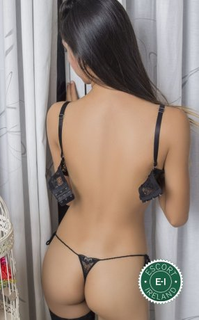 Meet the beautiful Sexy Alessia in Galway City  with just one phone call