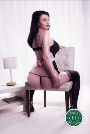 dundalk escorts