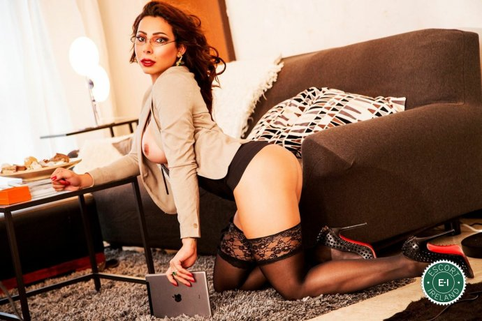TS Pamela Nayara is a hot and horny Venezuelan escort from Dublin 9, Dublin
