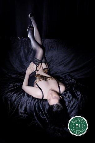 Carolyne  is a sexy Dutch escort in Dublin 4, Dublin