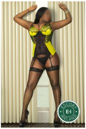 Meet the beautiful Ebony Lisa in Galway City  with just one phone call