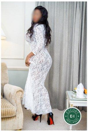 Jazzlynn Cole is a hot and horny Austrian escort from South County Dublin, Dublin