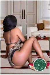 Sofi Bella is a super sexy Caribbean Escort in Cork City
