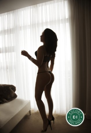 Book a meeting with Lexy in Dublin 18 today
