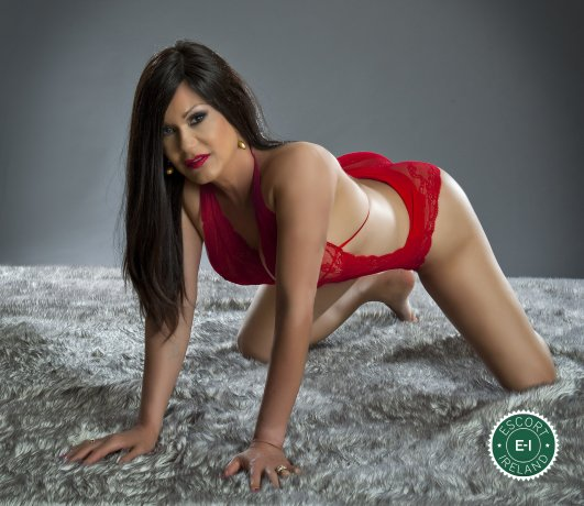 Vanessa TS is a sexy Colombian escort in Dublin 6 West, Dublin