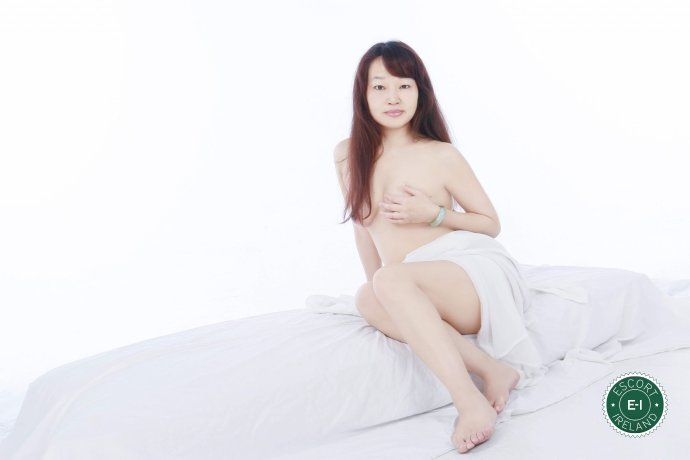 Sunshine is a high class Taiwanese escort Dundalk, Louth