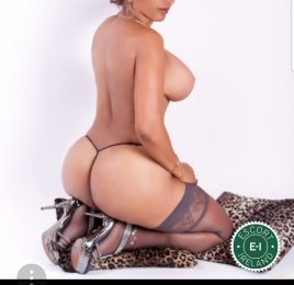 Meet Mature Maria in Athlone right now!