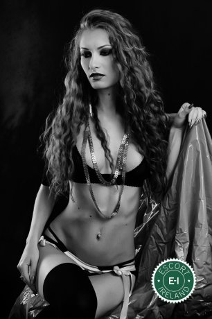 Katye is a high class Maltese escort Dublin 2, Dublin