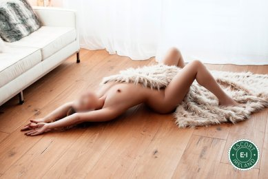 English Sophya is a hot and horny English Escort from Dublin 4