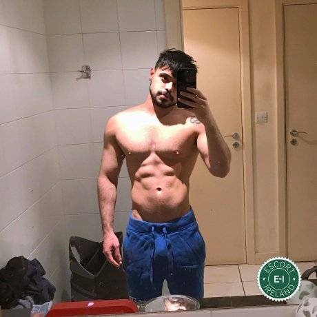 Meet the beautiful Pietro in Dublin 8  with just one phone call