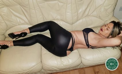Spend some time with Bella Iza in Athlone; you won't regret it