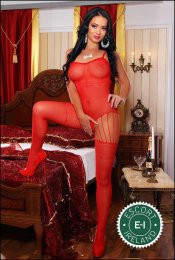 The massage providers in Limerick City are superb, and Alisa is near the top of that list. Be a devil and meet them today.