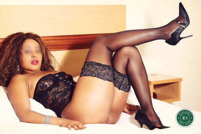 Spend some time with Bella in Killarney; you won't regret it
