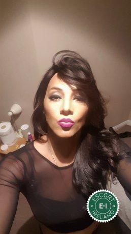 Baby XXL TV is a high class Brazilian escort Dublin 7, Dublin