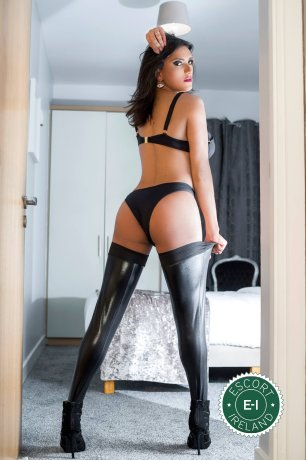 Book a meeting with TS Suzanna in Dublin 1 today