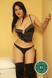 Meet the beautiful TS Naira in Dundalk  with just one phone call