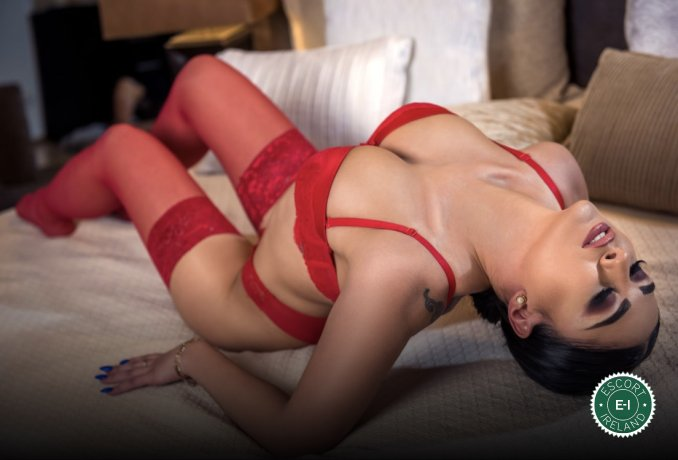Book a meeting with Zeynep in Derry City today
