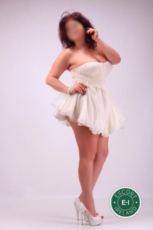 Book a meeting with Sweet Rita in Cork City today