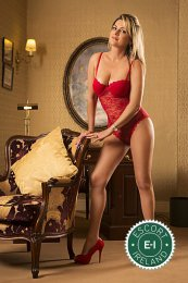 Book a meeting with Alessandra in Maynooth today