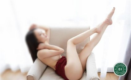 The massage providers in Galway City are superb, and Jasmine Massage is near the top of that list. Be a devil and meet them today.