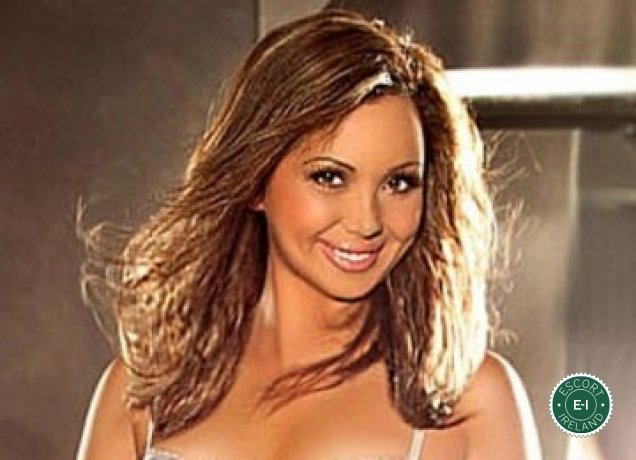 Sweet Angel is a hot and horny Spanish escort from Cork City, Cork