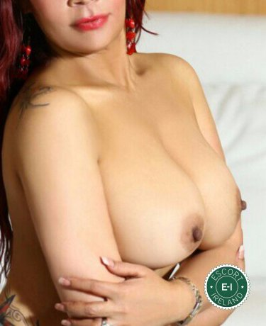 The massage providers in Cork City are superb, and Estrella is near the top of that list. Be a devil and meet them today.