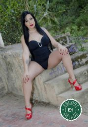 Meet the beautiful TS Dayana Araujo in Galway City  with just one phone call