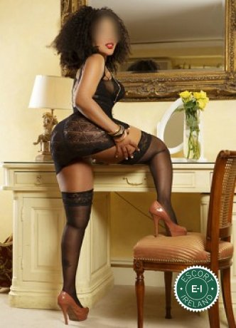 Bella is a sexy French escort in Galway City, Galway