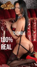 TS Cibele XXL  is a sexy Brazilian Escort in Cork City