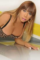 Clara Castro TS - transexual escort in Santry