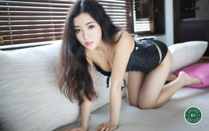The massage providers in Dublin 8 are superb, and Anni is near the top of that list. Be a devil and meet them today.