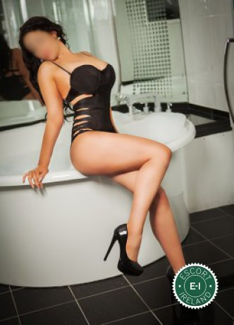 Irish Sarah is a sexy Irish escort in Belfast City Centre, Belfast